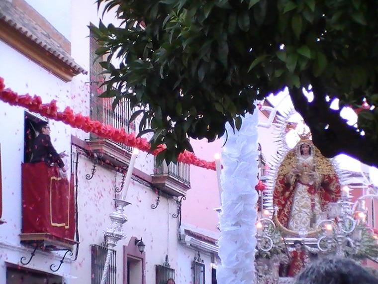 """Lluvia de pétalos en la calle que lleva su nombre """"Soledad"""""""