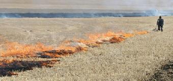 Medio Ambiente prohíbe las quemas agrícolas en zonas forestales hasta el próximo 15 de octubre