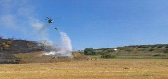 Restablecido servicio ferroviario entre Sevilla y Huelva tras detenerse por el incendio en las inmediaciones del Corredor Verde