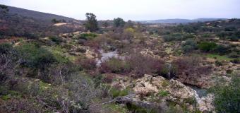 Las Cascadas del Guadiamar