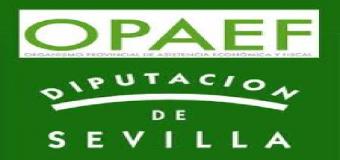 El Opaef ingresa 3,2 millones a los municipios por bonificaciones a tasa de recaudación voluntaria