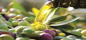 Diputación busca el mejor aceite de oliva virgen extra de la provincia y de las sierras