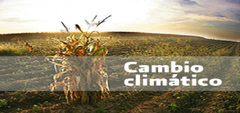 El campo andaluz recreará el escenario climático del futuro