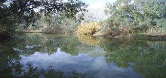 Corredor Verde del Guadiamar – Arroyo los Frailes