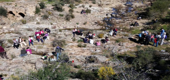 """Corredor Verde del Guadiamar """"Arroyo Los Frailes en Primavera"""""""