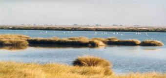 La sociedad Guadiamar, sancionada con 1,63 millones de euros por captar agua y regar sin permiso