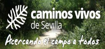Caminos Vivos de Sevilla, acercando el campo a todos