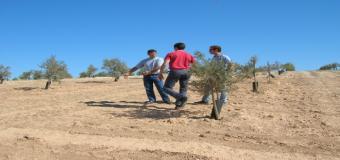 La Junta abre al fin la convocatoria para 2015 de ayudas a la incorporación jovenes a la actividad agraría