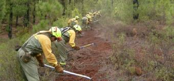 Comienza la época de alto peligro de incendios forestales