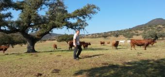 Abierto el plazo para las ayudas a la creación de empresas para jóvenes agricultores 2015
