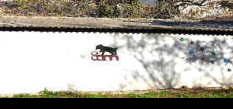 Huévar del Aljarafe vuelve a tener protectora para la recogida de animales