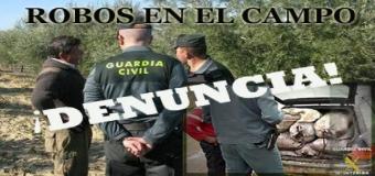 ¡Denuncia los robos o actos vandalicos que sufras en tu explotación agrícola o ganadera!