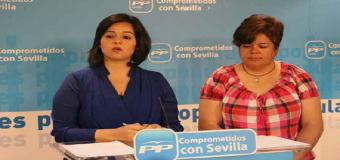 """El PP denuncia la """"falta de inversión en carreteras"""""""