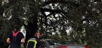 La carretera A-8061 se cobra una nueva victima mortal