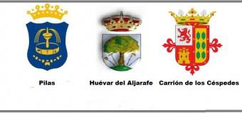 Pilas, Huévar del Aljarafe y Carrión de los Céspedes se unen para pedir el arreglo de la A-8061