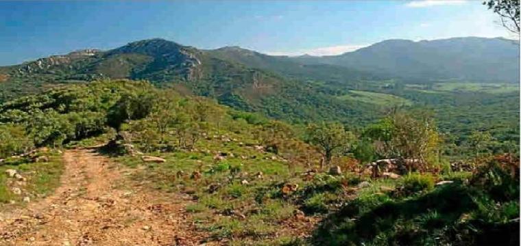 """Vista en la Sierra Norte de Sevilla donde la ruta entre Alanís y las Navas de la Concepción, una de las que aparecen en la web """"Caminos Vivos"""""""