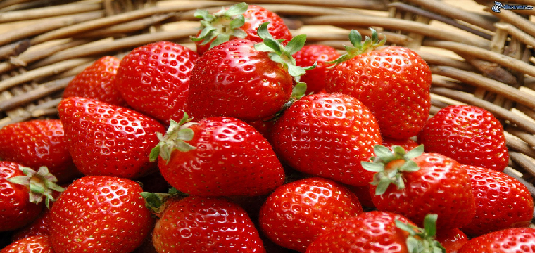 fresas precios bajada