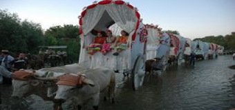 Benacazón prepara la caravana de carretas más larga de la historia