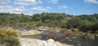 Río Agrio, tramo entre Aznalcóllar y el Castillo de las Guardas