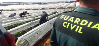 Unos 40 efectivos de la Guardia Civil refuerzan el dispositivo para la campaña fresera