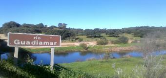 Guadiamar: el río de Doñana