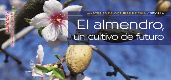 La localidad sevillana de Huevar de Aljarafe albergará el próximo martes 25 de octubre la jornada 'Almendro, un cultivo de futuro'.
