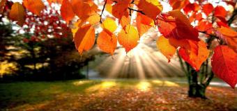 Los expertos auguran que Andalucía tendrá un otoño con temperaturas algo más altas de lo habitual