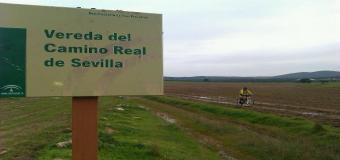 Solicitan que el Camino Real hasta Sevilla sea recuperado