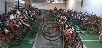 La Policía Local de Sevilla expone decenas de bicicletas robadas para localizar a sus propietarios