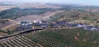BENACAZÓN – Un incendio forestal afecta tres hectáreas de pasto y matorral