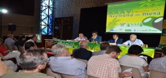 Preocupación entre los agricultores ante el verdeo por la escasez de lluvias