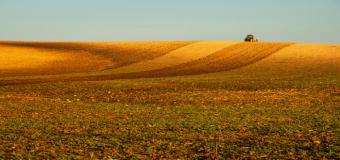 Aplicación de la prohibición fitosanitarios en superficies de interés ecológico (SIE).
