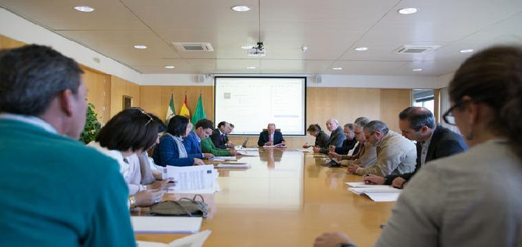 Reunión del Consejo Rector del Opaef. /