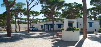 El nuevo decreto de campings de Andalucía regulará las áreas de pernocta para autocaravanas