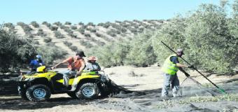 Un vacío legal vale para recibir ayudas para comprar un quad