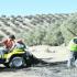 RECOLECCIÓN. Jornaleros trabajan con un quad en la aceituna en una imagen de una campaña anterior. (Agustín Muñoz)