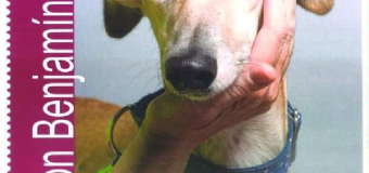 Campaña de Diputación en los municipios de menos de 5.000 habitantes en contra del abandono y maltrato animal
