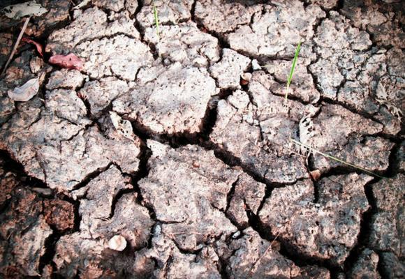 España ha sufrido la peor sequía de los últimos 20 años