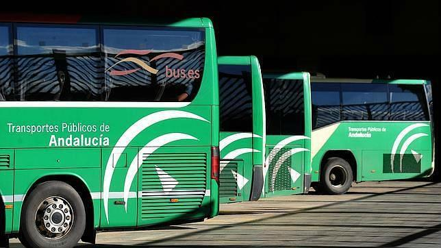 buses-junta-1--644x362