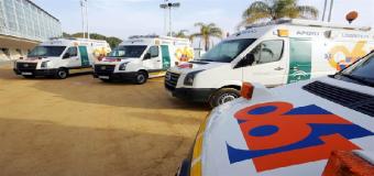 Muere un operario municipal tras caerle encima un pino en Hinojos