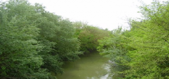 Arroyo de los Frailes naturaleza Urbana por descubrir
