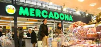 Mercadona invertirá 12 millones en el bloque logístico de Guadix