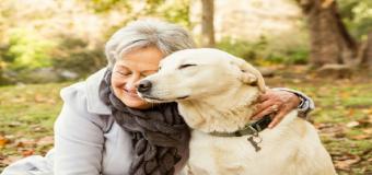 Los perros atenúan la soledad de los ancianos