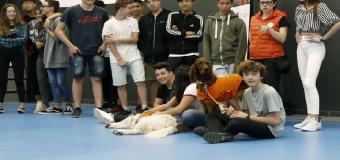 La escuela Lleó XIII arranca un programa para prevenir el bullying mediante terapia con perros