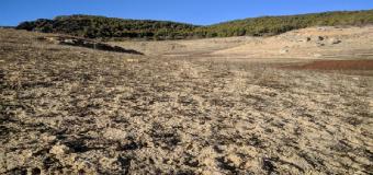 Greenpeace alerta que las últimas lluvias no serán el fin de la desertificación y la sequía en España