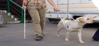 La nueva ley de los perros de asistencia ampliará los colectivos beneficiarios