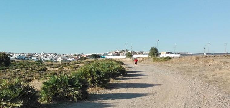 Uno de los caminos en Aznalcóllar donde se han encontrado cadáveres de canes - ABC