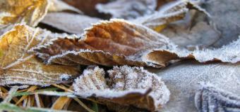 La masa de frío polar hará caer el domingo los termómetros de golpe hasta 14º C