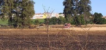 HUEVAR – Un incendio quema casi cuatro hectáreas de cereal