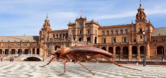 Las cucarachas vuelven a sus vacaciones de verano